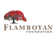 Flamboyan Foundation